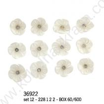 цветчета бутониери