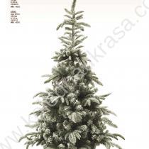 Елха Snow fir